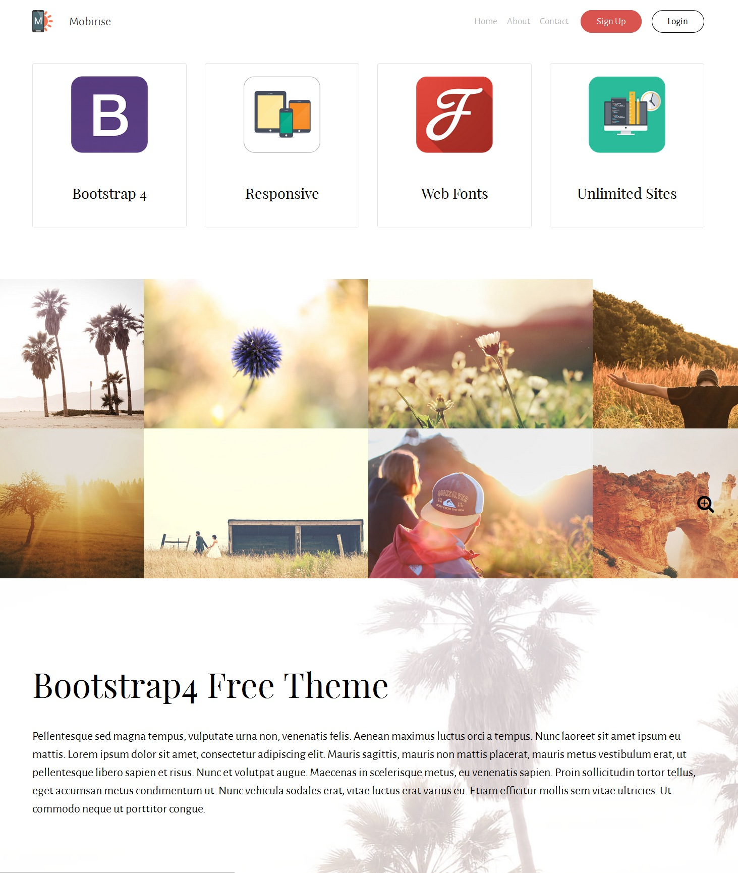 CSS3 Bootstrap Resume Theme