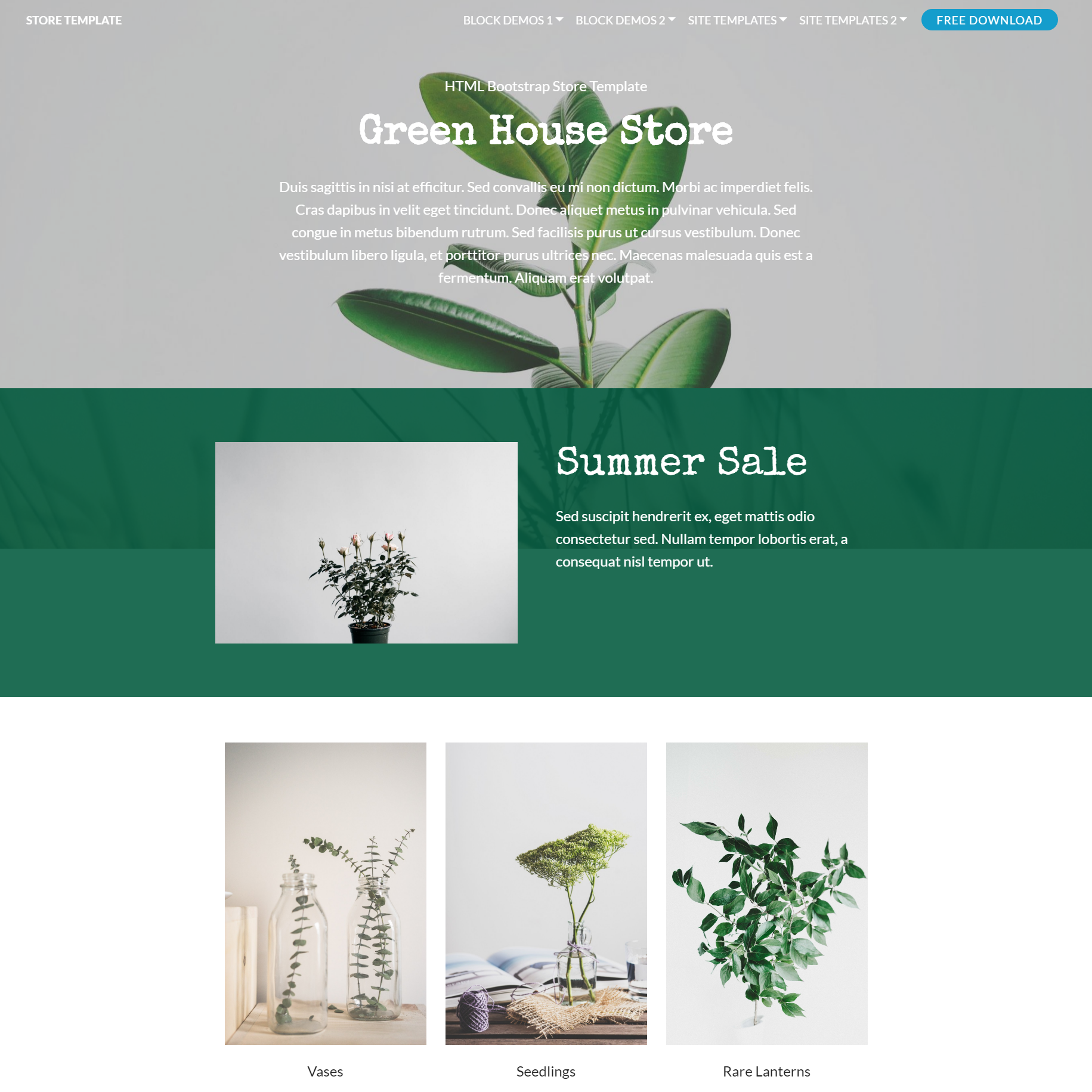 CSS3 Bootstrap Store Templates
